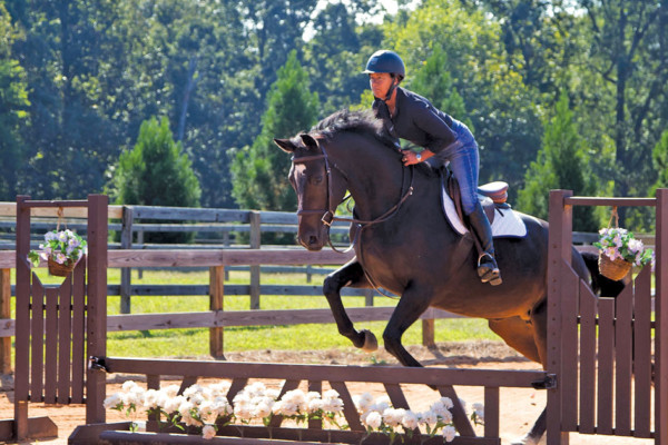 Canterlane Farm Take the Reins for a Riding Experience!