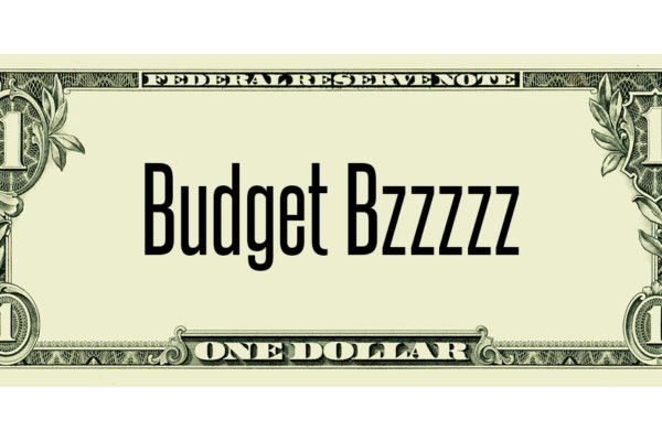 Budget Bzzz: Starting the New Year Off Right
