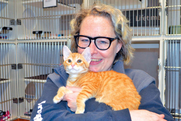 Forsyth Humane Society A Commitment to Save More Cats and Dogs
