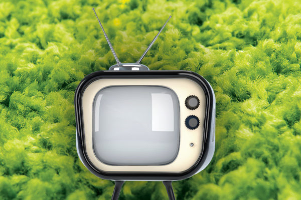 Rebooting the Classics: The Popularity of Bringing Back Television Shows