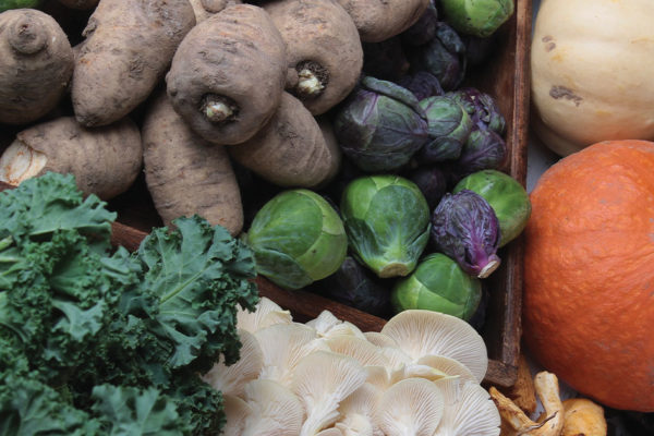 Storing the Best Foods for Winter