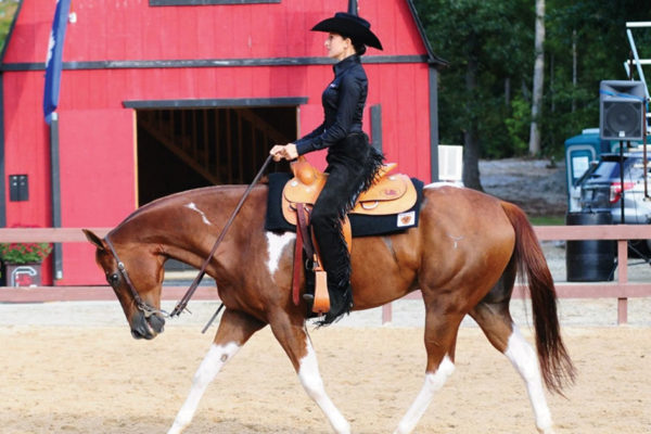 To Your Health:  The Equestrian Athlete:  More Than Meets the Eye