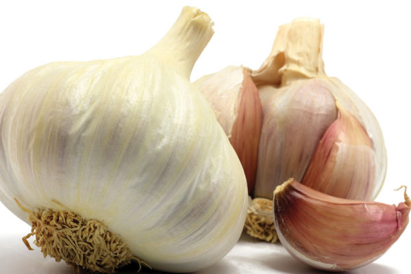 The Vampire's Guide to the Health Benefits of Garlic