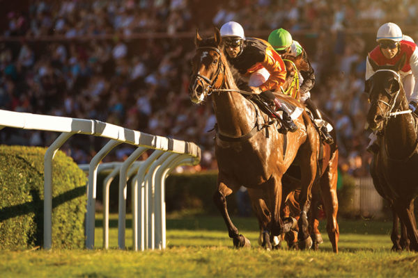 Memorable Kentucky Derby Winners