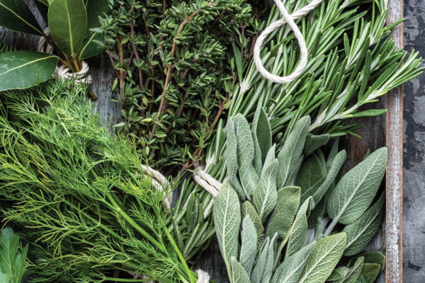 Eating Health with Herbs