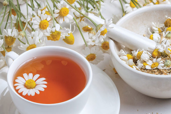Herbal Healing: Calming Chamomile